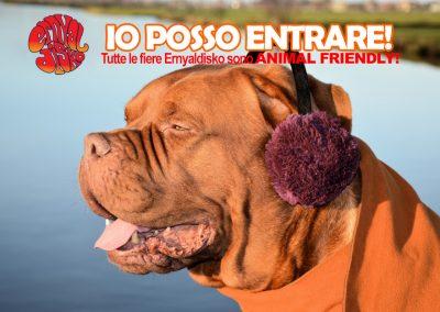IO_POSSO_ENTRAREfb